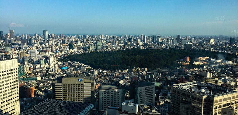 Un anno di vita in Giappone